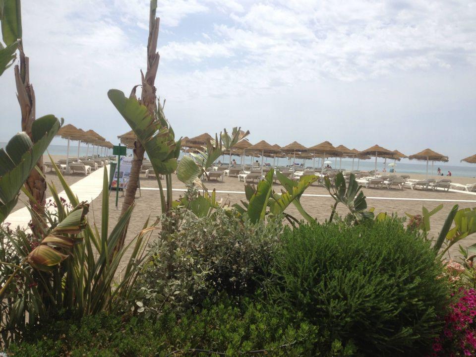 Von Strandbar Hotel MS Tropicana