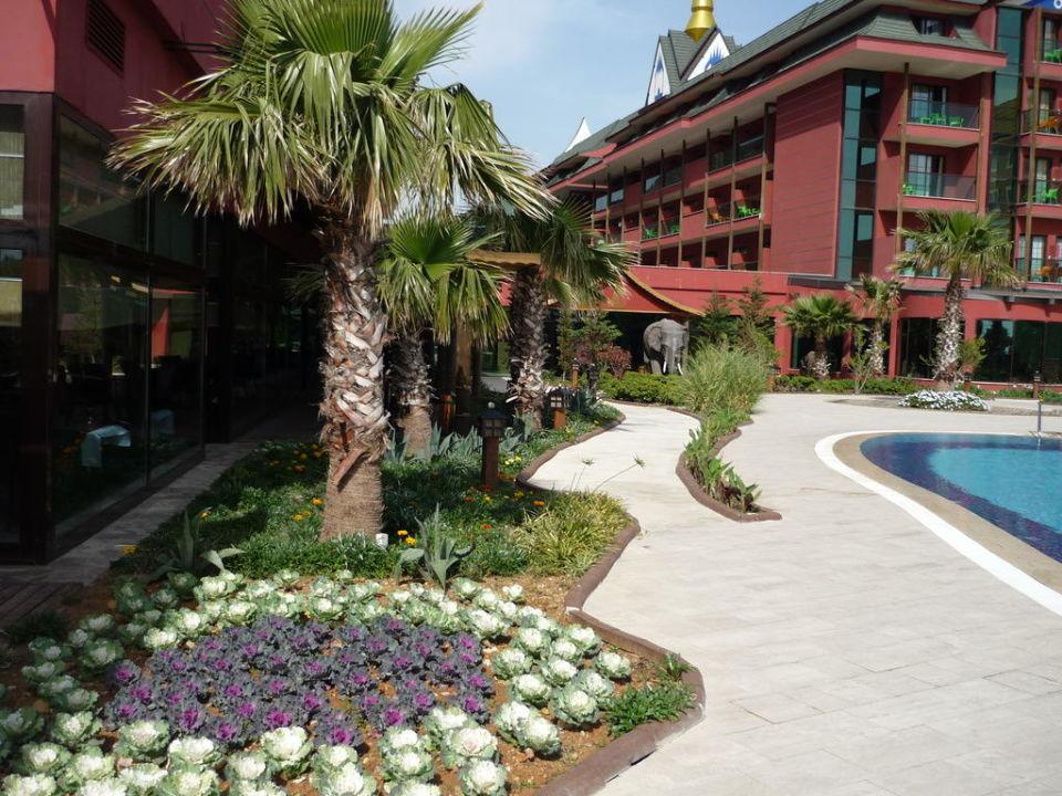 Garten im Hotel Siam Elegance Hotels & Spa