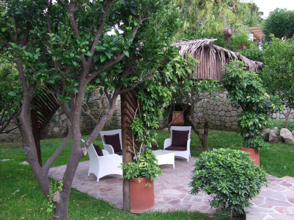 Gemütliche Sitzecke Im Garten Hotel Tritone Terme Forio Ischia