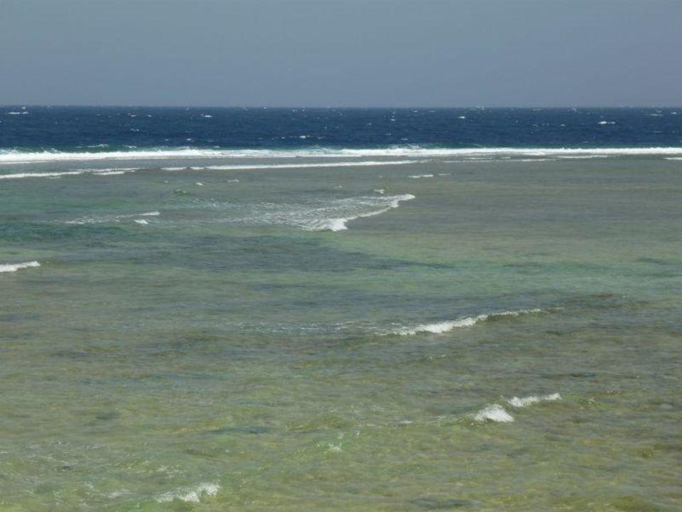 Blick über das Riffdach Mövenpick Resort El Quseir