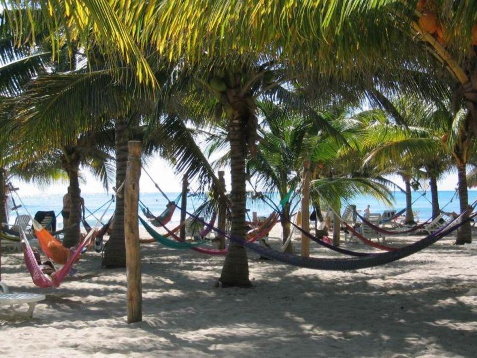 Strandabschnitt mit Hängematten Sandos Caracol Eco Resort