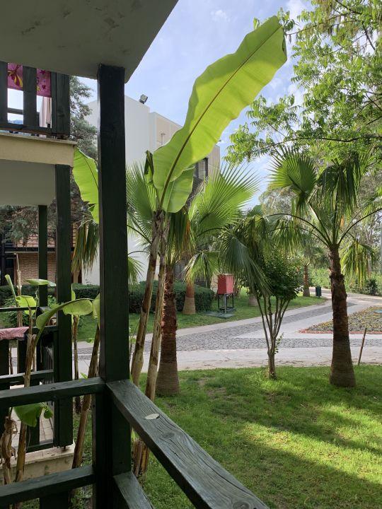 Zimmer Limak Limra Resort