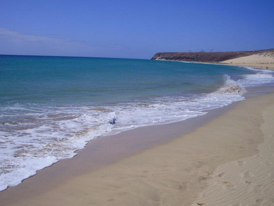 Strand SBH Monica Beach Resort