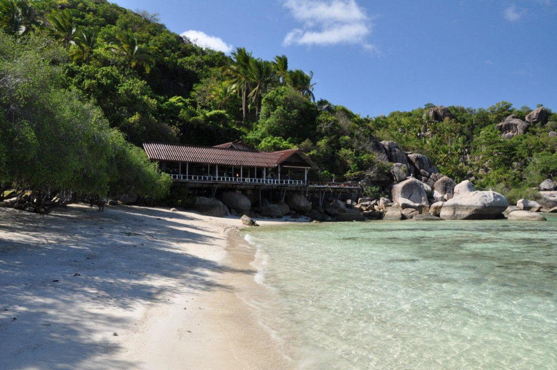 Freedom Beach Resort Ko Tao Paradise Zone Chalok Bay