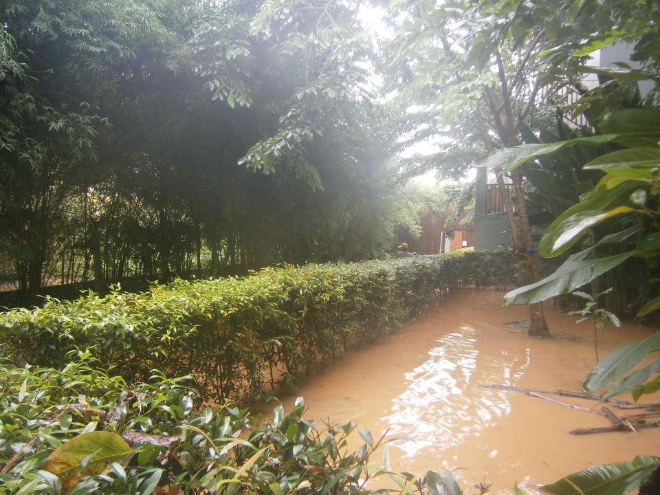 Braune Suppe Metadee Resort & Villas