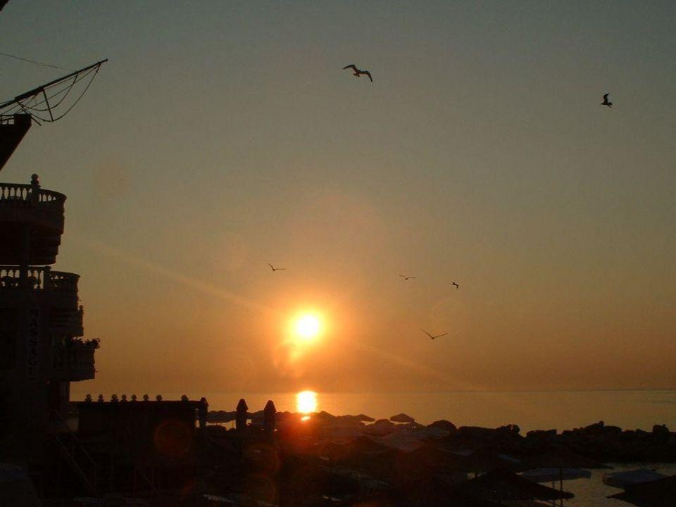 Sonnenaufgang mit Möven SPA Hotel Sirius Beach