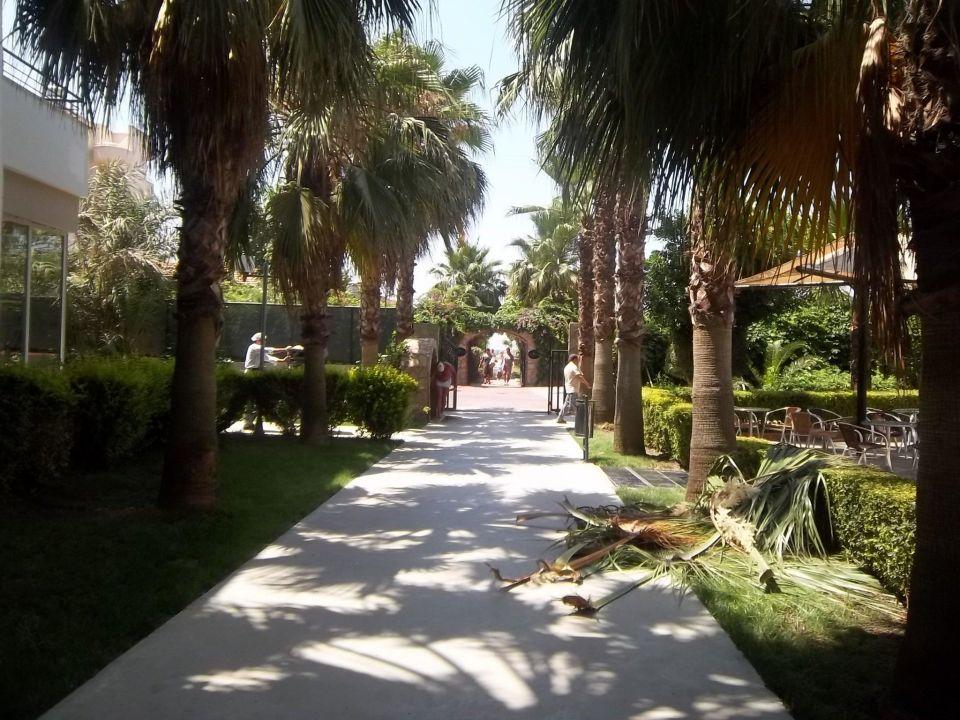 Der Weg zum Strand  Hotel Royal Garden Select