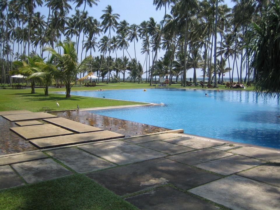 Hotel Blue Water Sri Lanka Bewertung