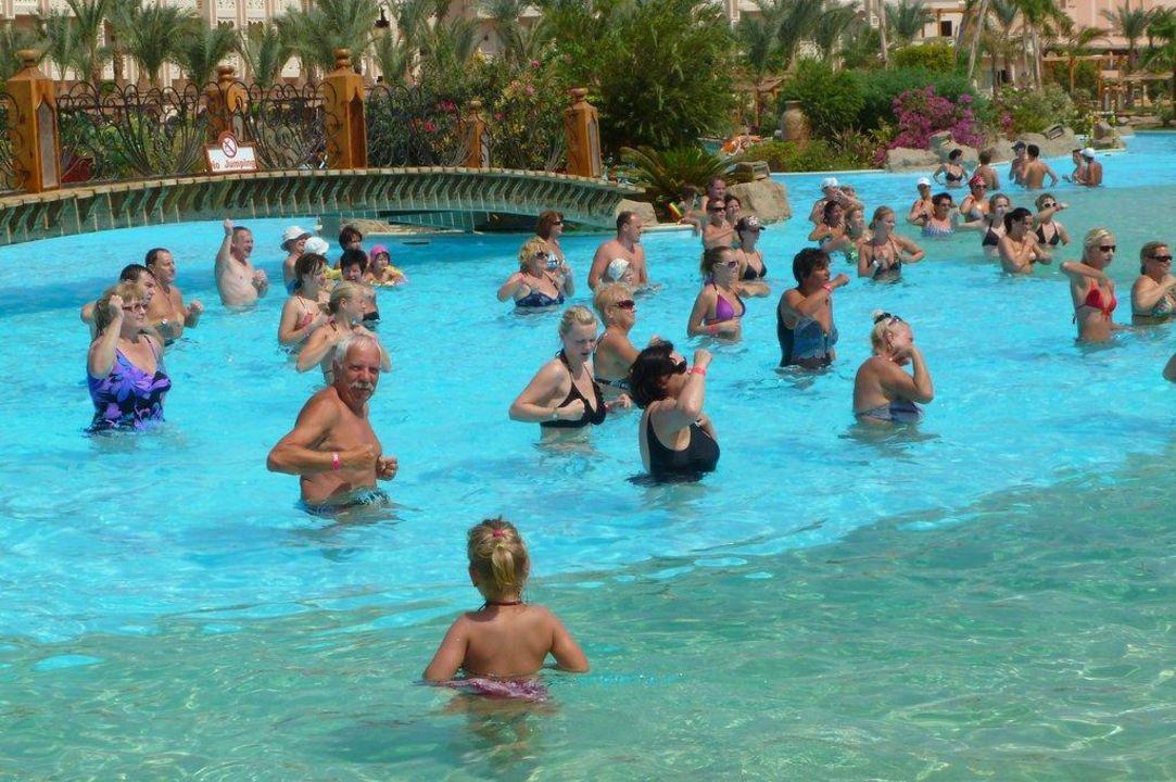Wassergymnastik Albatros Palace Resort