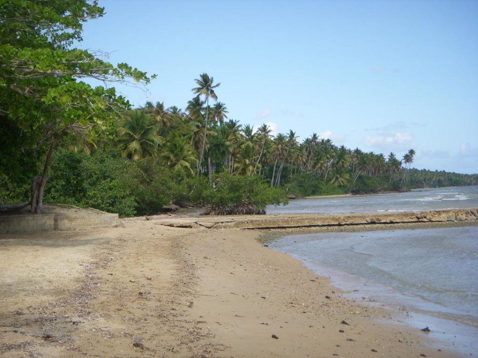 Hotel beach of bahia de los dioses samana hotel Beach Hotel Bahia De Los Dioses