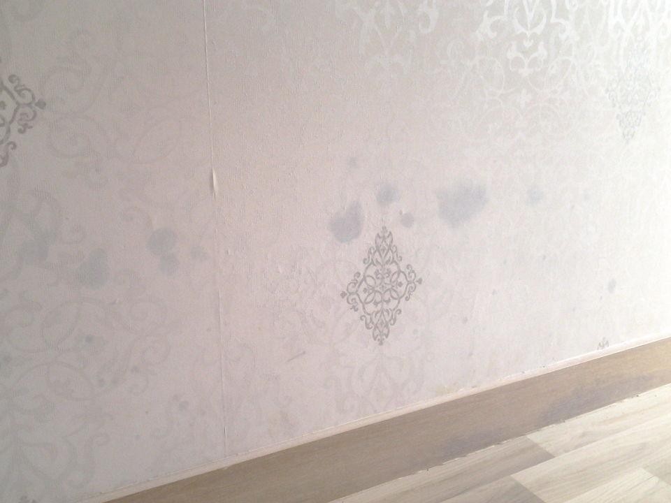 schimmel unter tapete affordable schimmel hinter holzdecke was tun with schimmel unter tapete. Black Bedroom Furniture Sets. Home Design Ideas