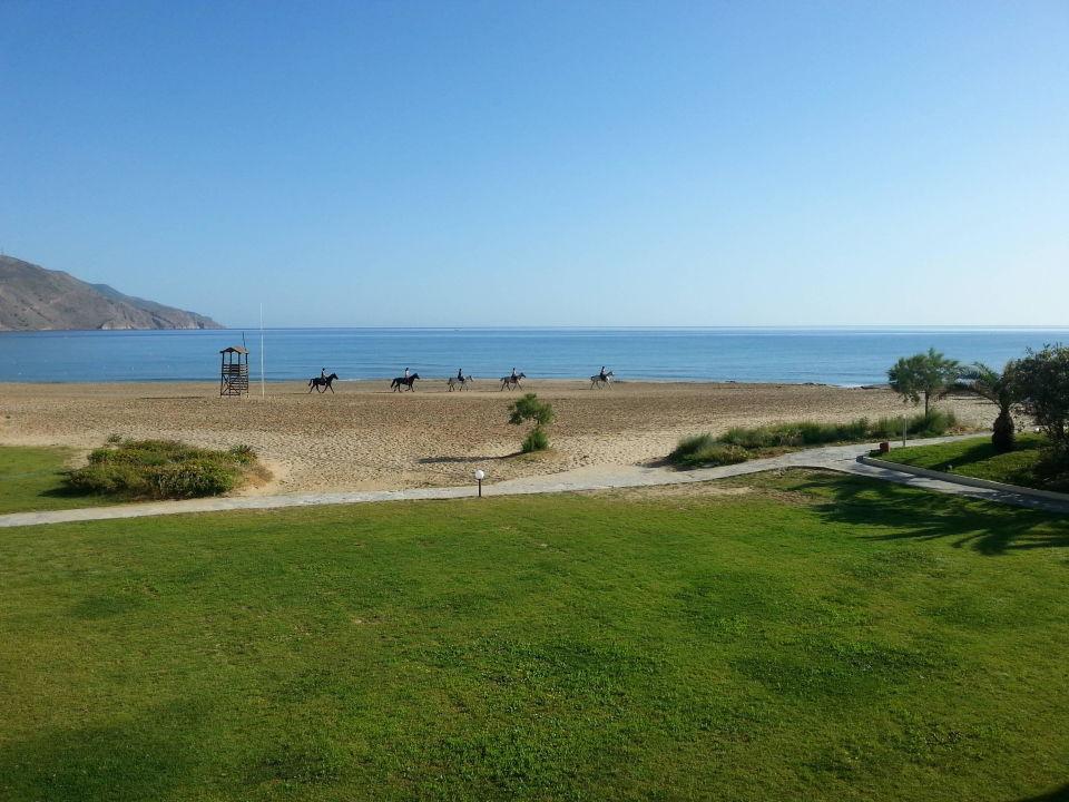 garten strand hotel pilot beach georgioupolis. Black Bedroom Furniture Sets. Home Design Ideas