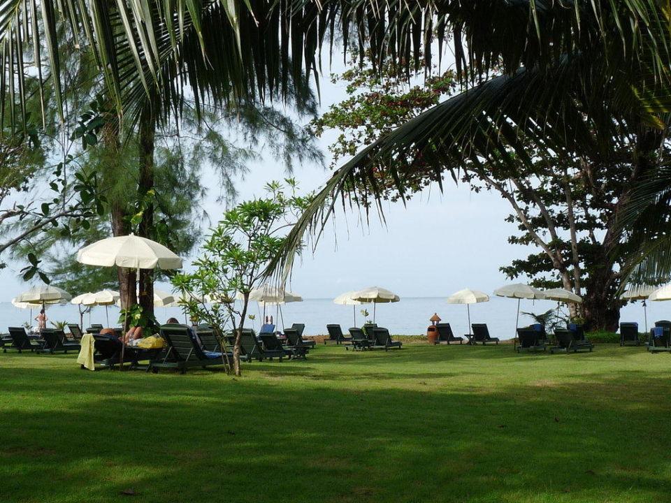 Liegewiese Khao Lak Merlin Resort