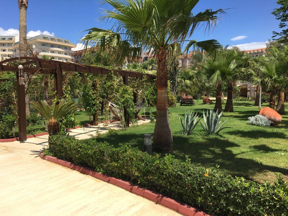 Saphir Resort And Spa Okurcalar