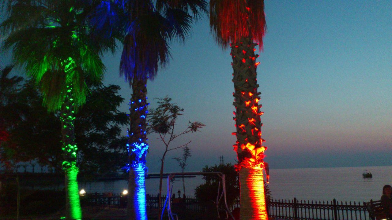 Nachtbild zum Stand Lonicera World Hotel