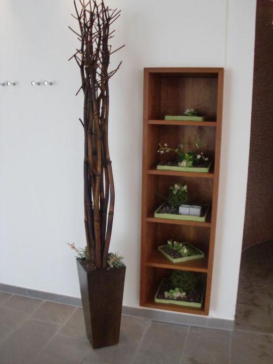 Dekoration Sauna Neu Fürstenhof Quellness  Und Golfhotel