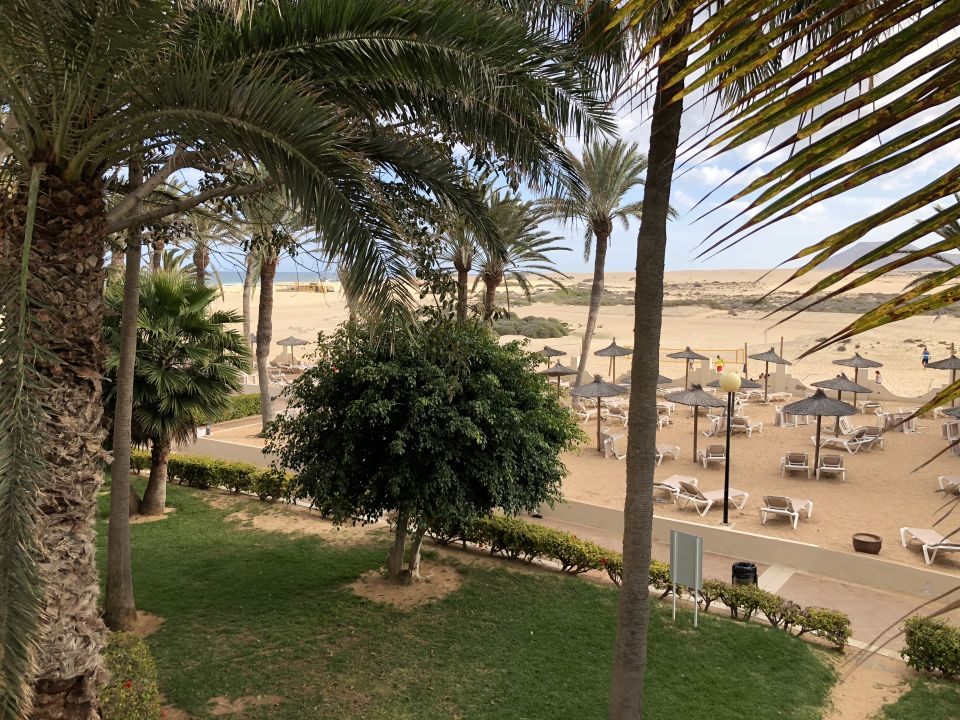Strand hotel riu oliva beach village corralejo for Riu oliva beach village