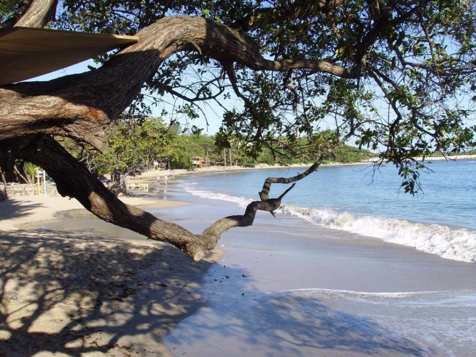 Hotelstrand Cofresi Palm Beach & Spa Resort