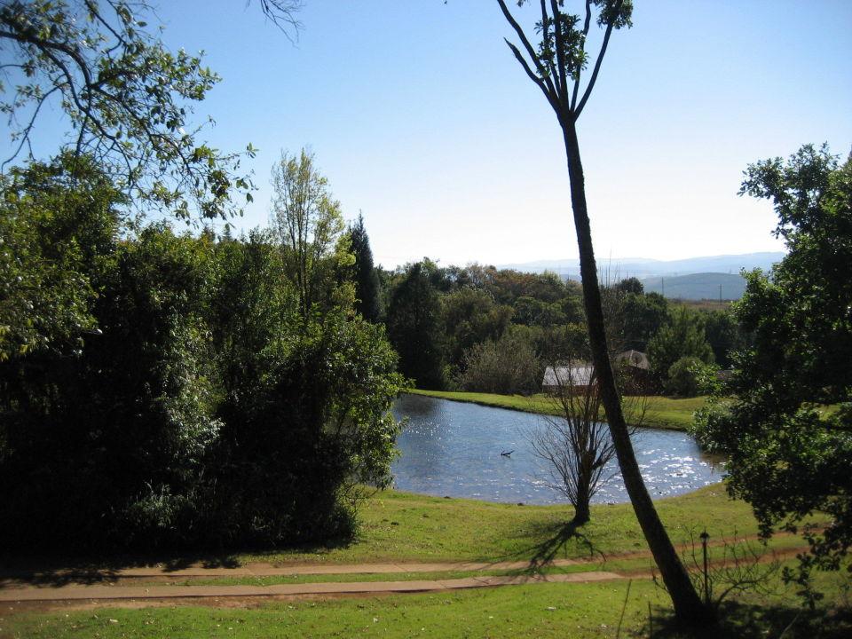 Blick auf den Teich Zur Alten Mine Guest Farm B&B