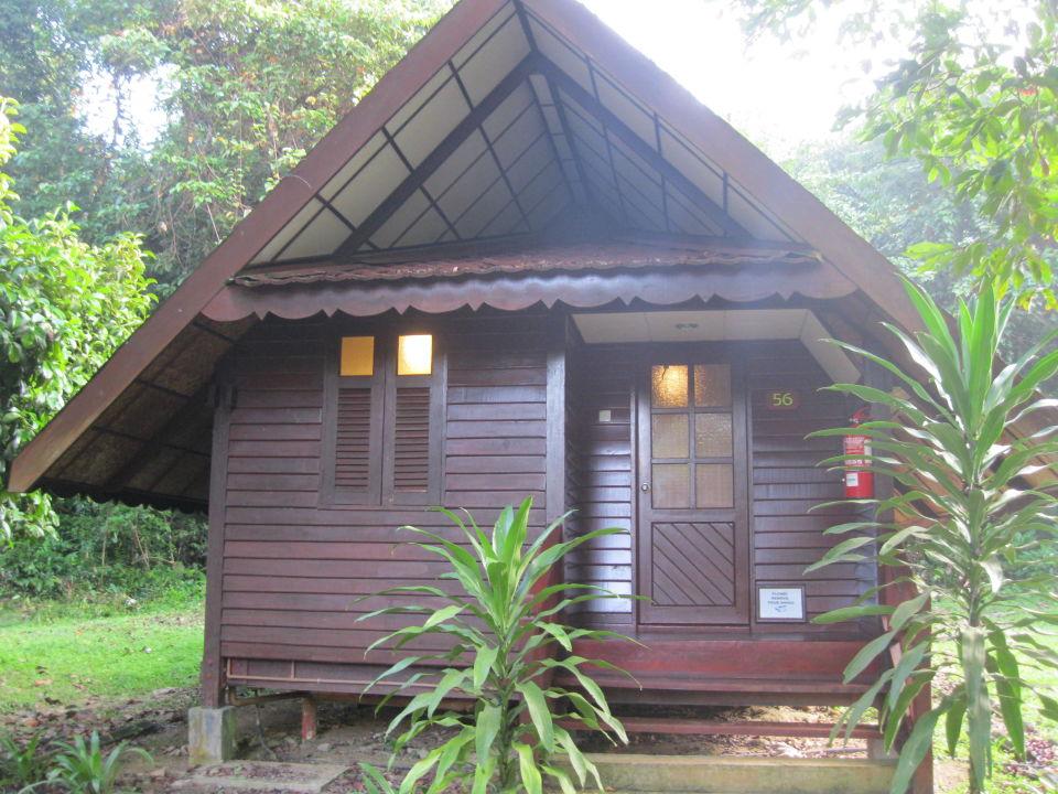 kleine holzh user hotel mutiara taman negara resort in. Black Bedroom Furniture Sets. Home Design Ideas