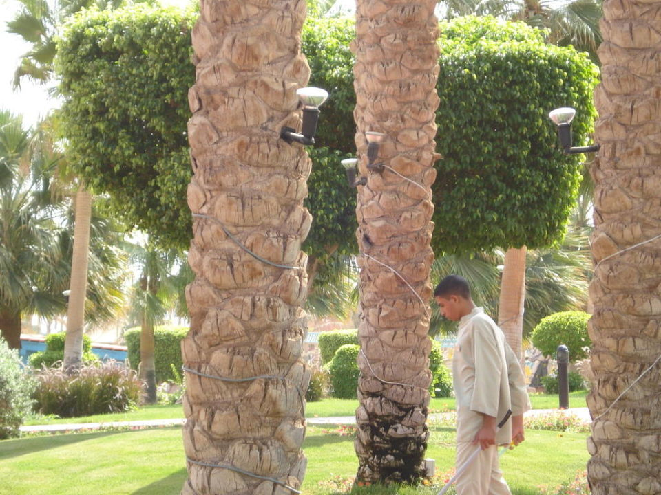 Eine superschöne Anlage Tropicana Grand Azure Resort  (geschlossen)