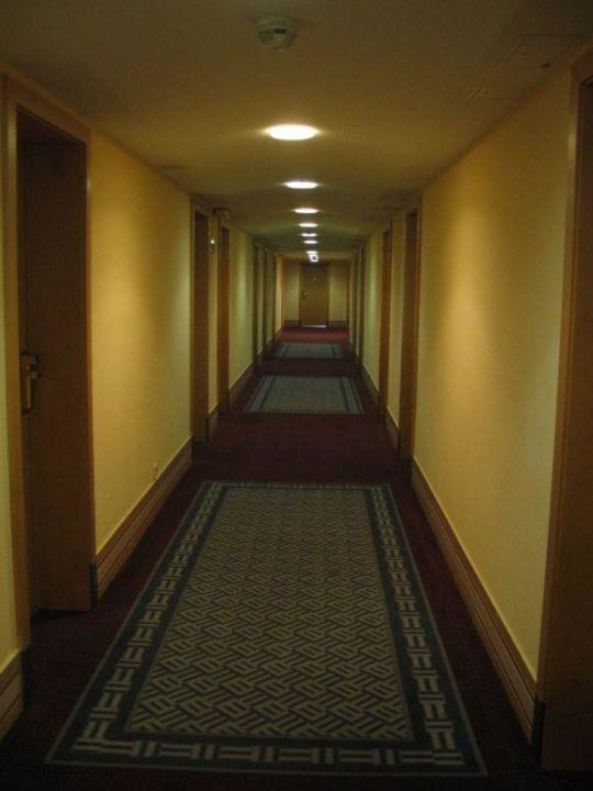 Corridor on the 6th floor of the hotel Austria Trend Hotel Ananas