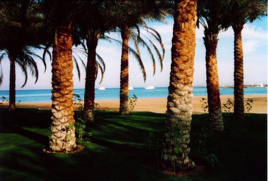 Küste The Grand Hotel Hurghada