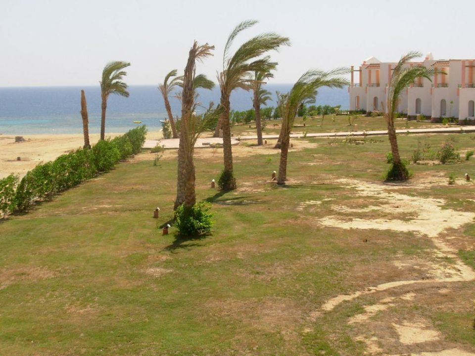 Widok z pokoju Fantazia Resort Marsa Alam