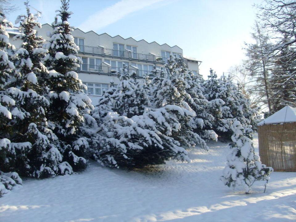 Hotel Anders - Arnstadt Aussenansicht Winter Hotel Anders  (geschlossen)