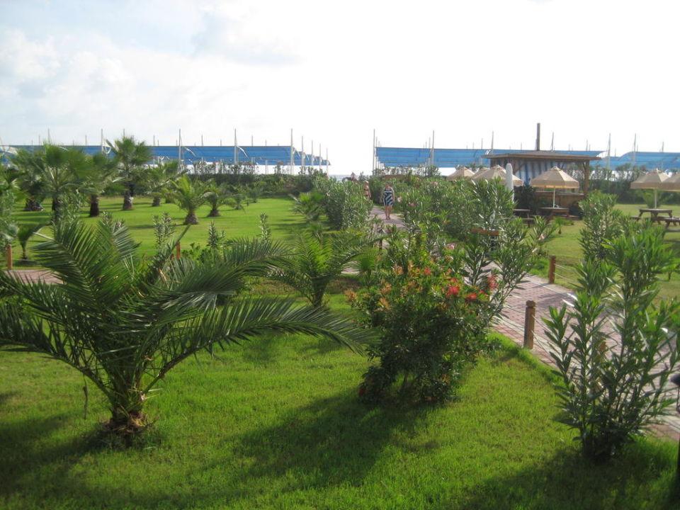 Gartenanlage SunConnect Sea World Resort & Spa