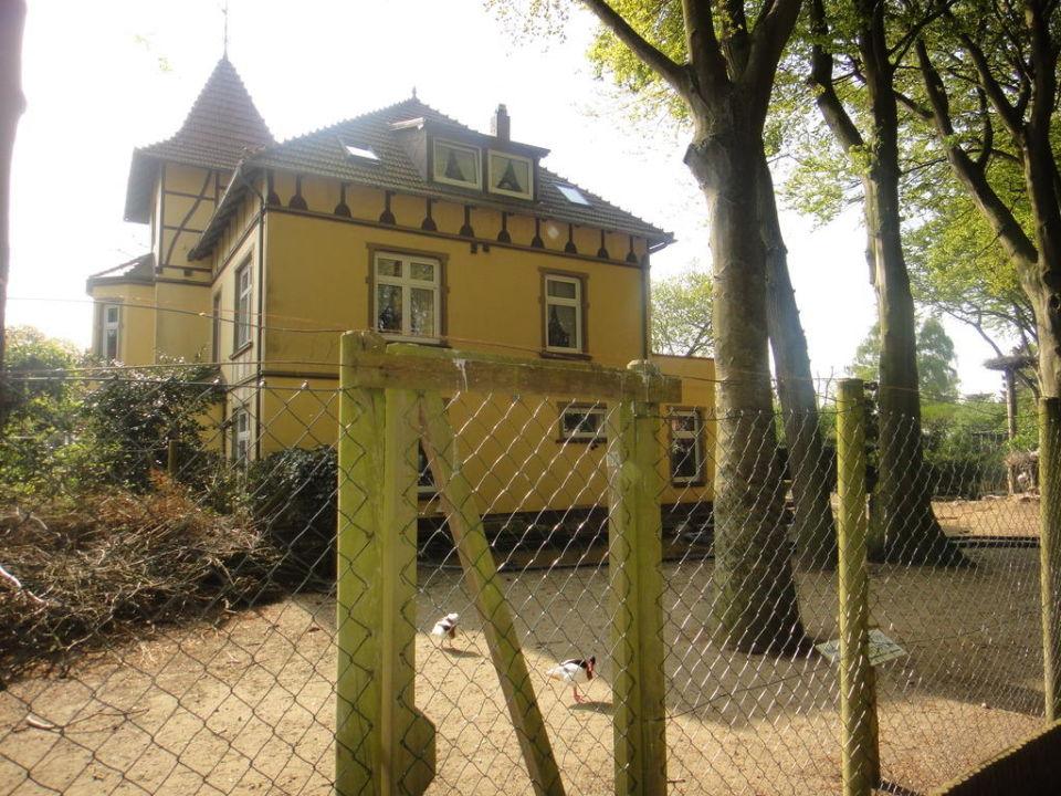 Seitenansicht Villa Friede Pension Villa Friede