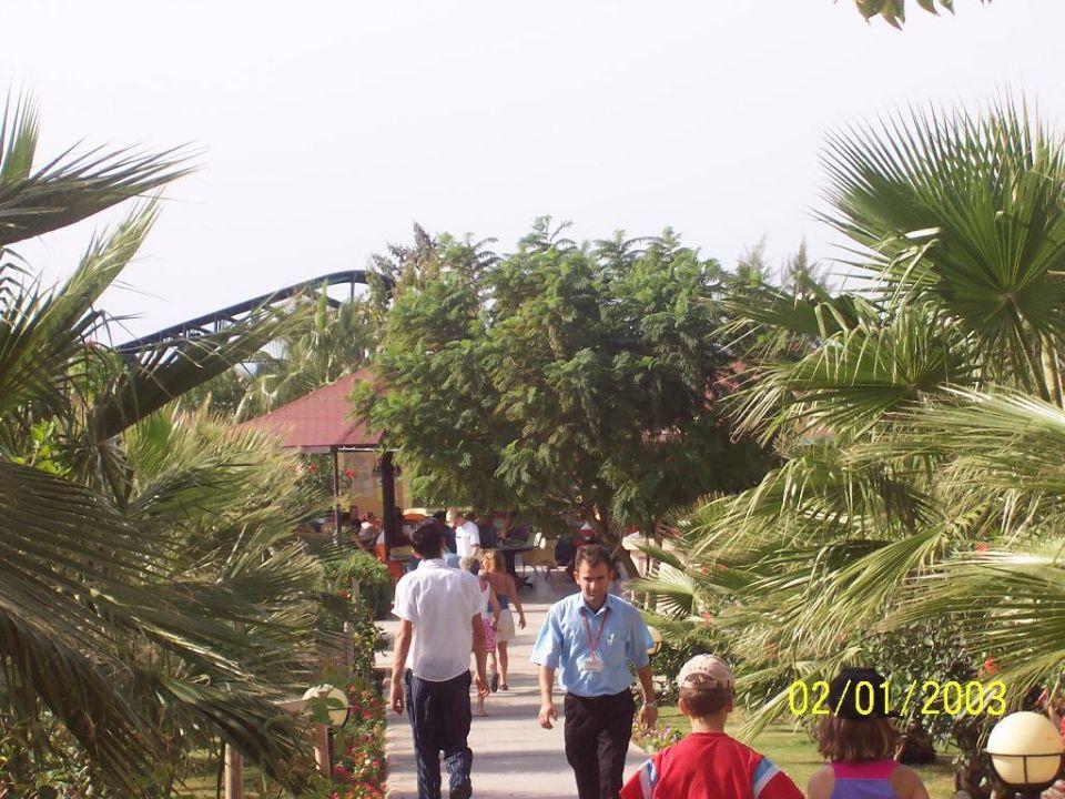 Garten Justiniano Club Park Conti