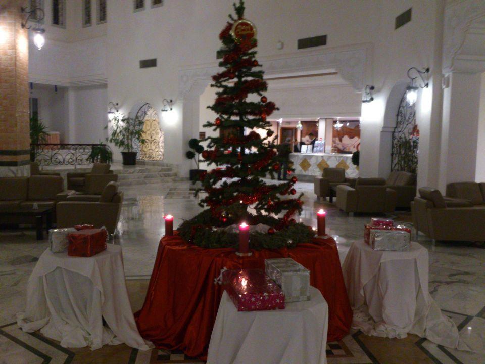 weihnachten in tunesien hotel vincci marillia hammamet