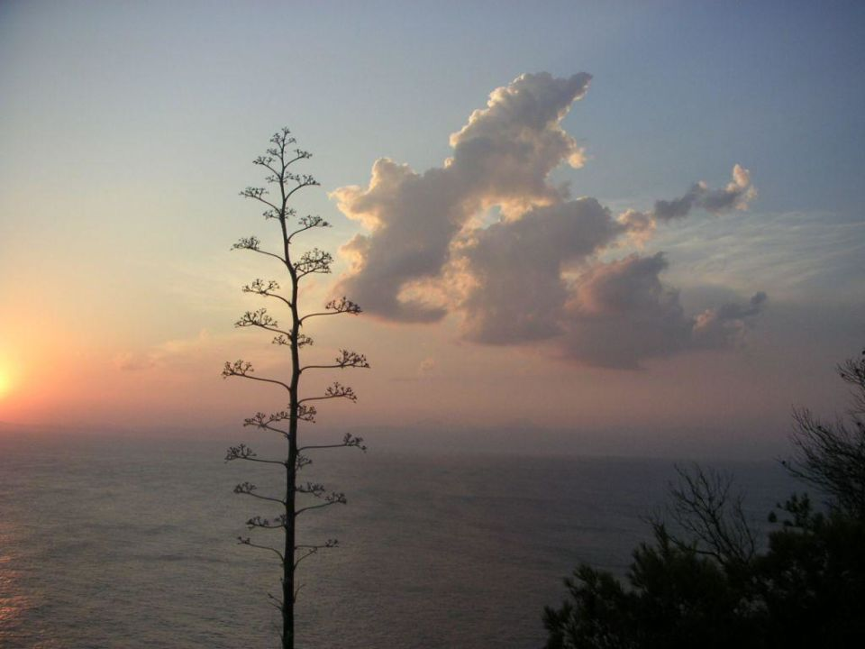 Sonnenuntergang Sun Club Eldorado