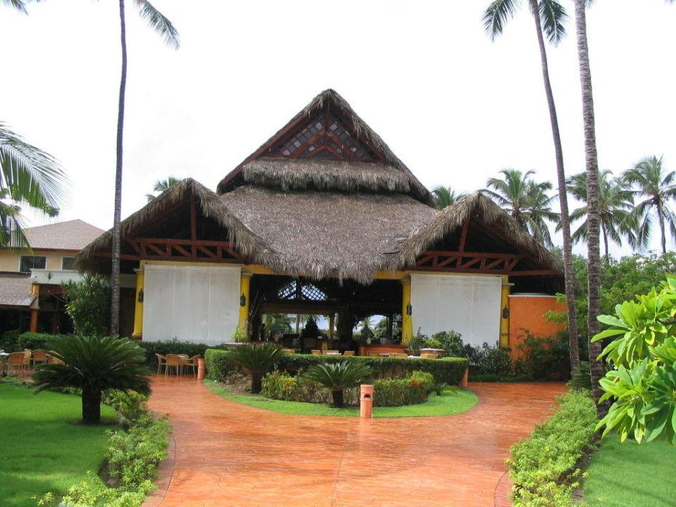 Lobby VIK Hotel Cayena Beach Club