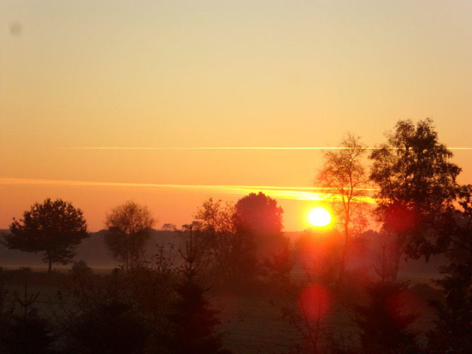Guten Morgen Ferienpark Landal Dwergter Sand Molbergen