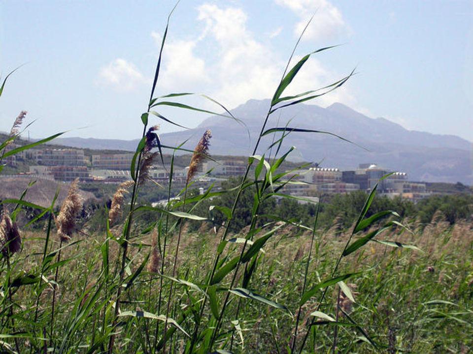 Iberostars Kipriotis Panarama und Kos Bay View Kipriotis Panorama Hotel & Suites