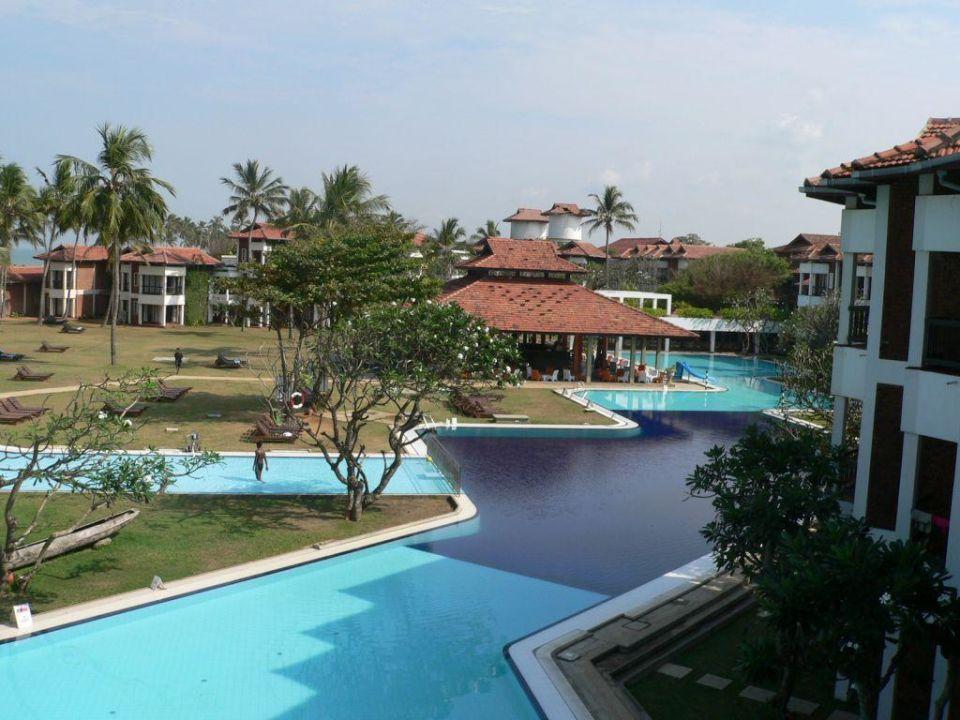 Pool und Pool-Bar des Hotel Dolphin Club Hotel Dolphin
