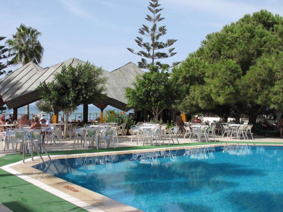 Poolbereich Hotel Nerton