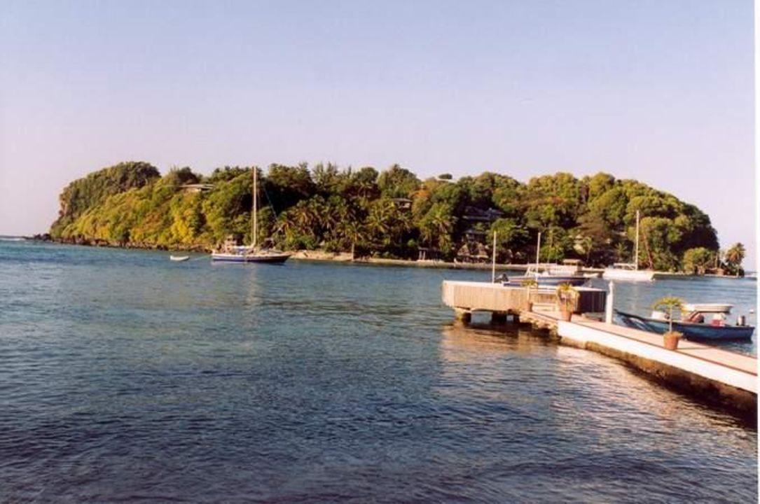 Aussicht auf Young Island Mariners Hotel