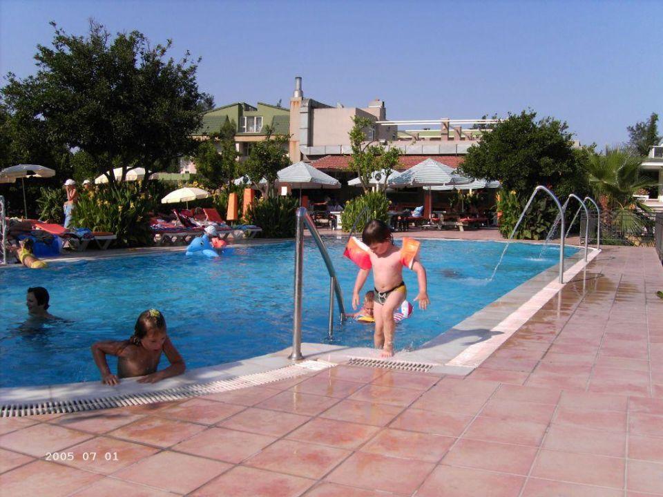 Swimmingpool groß Armas Gul Beach Hotel