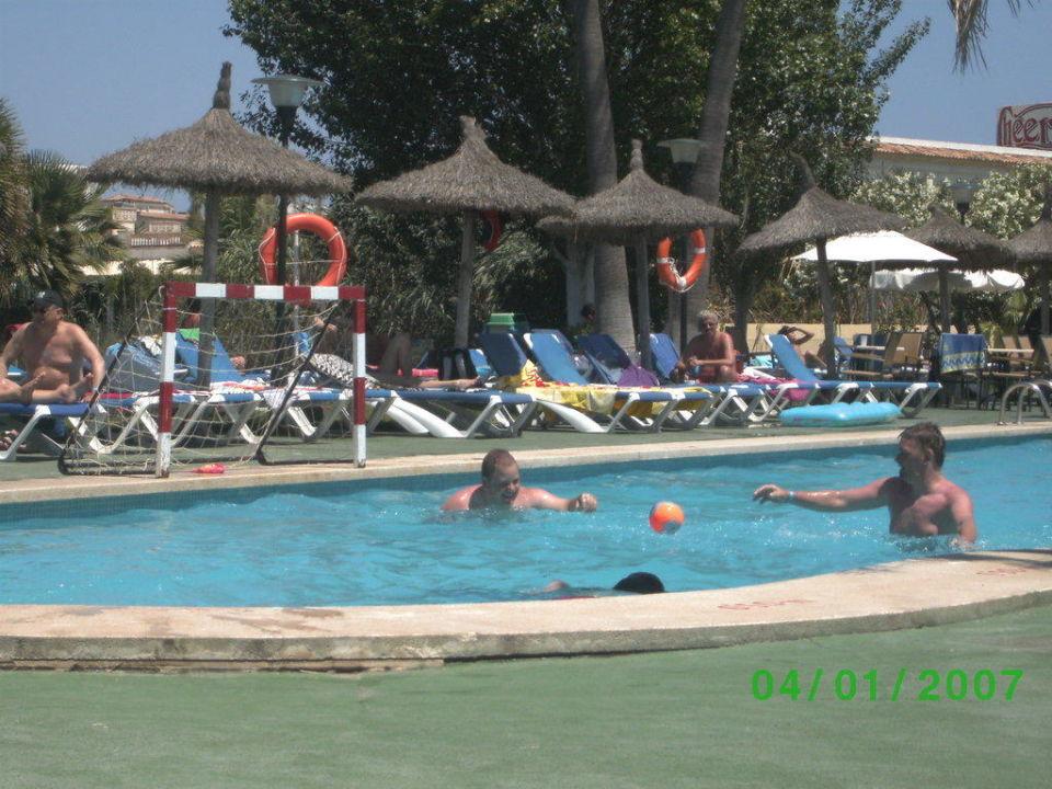 Poolanlage Hotel Grupotel Amapola