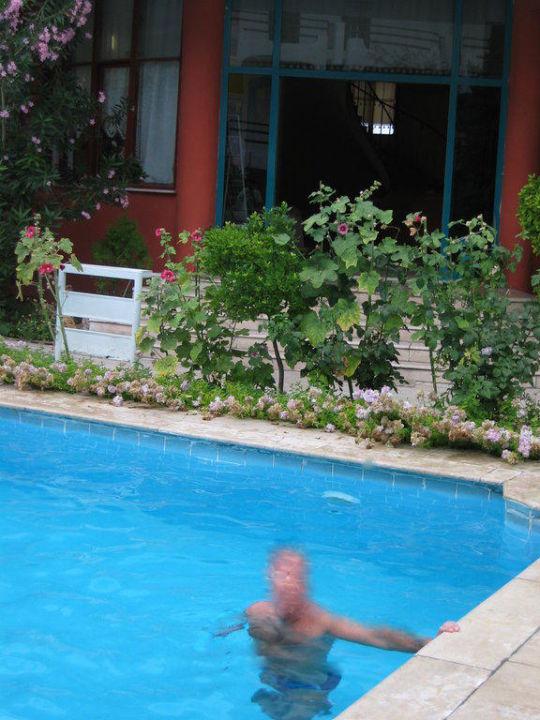 Widok na lobby od strony basenu Traverten Otel