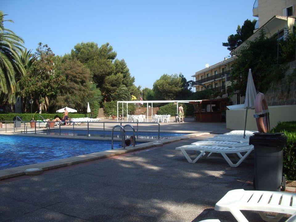 am pool Hotel Amazonas
