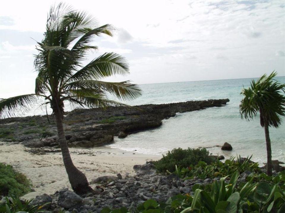 Strand1 Bel Air Collection Resort & Spa Riviera Maya