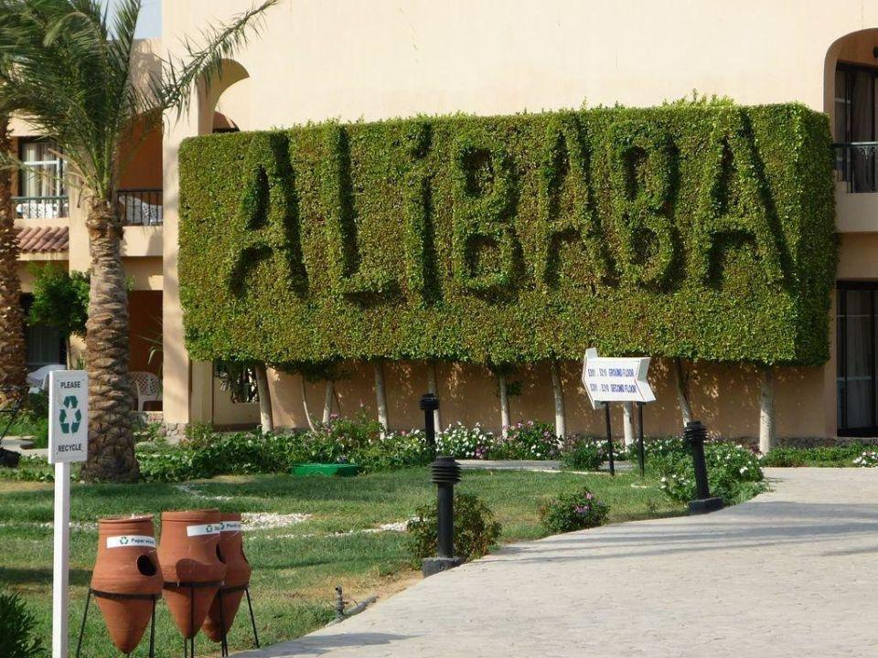 Ogród Hotel Ali Baba Palace