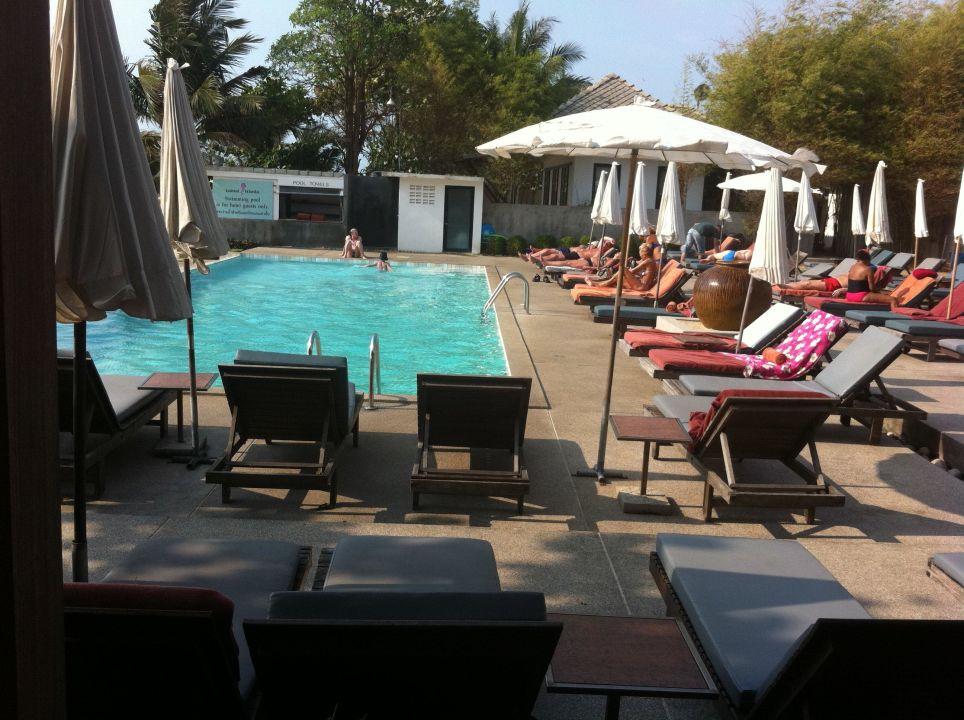 pool klein aber direkt am meer hotel lamai wanta beach resort lamai beach holidaycheck. Black Bedroom Furniture Sets. Home Design Ideas