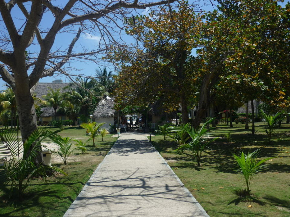 Die Verkaufsstände im Hotelgarten Melia Las Antillas - Adults only