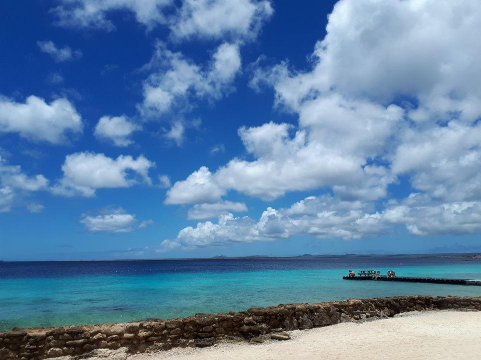 Strand Hotel Plaza Resort Bonaire