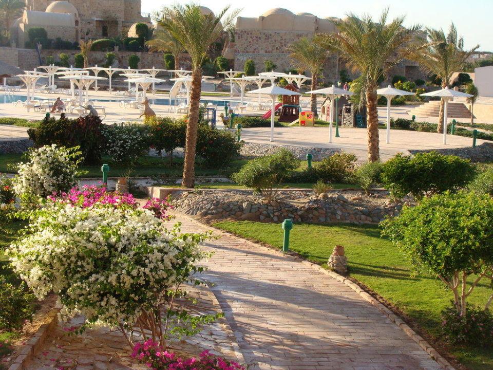 Parte di giardino sempre in fiore Pensee Royal Garden Resort